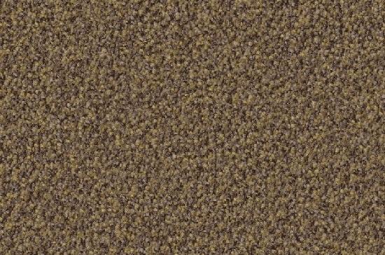 teppich vorwerk terzo g nstig frachtfrei boden4you kaufen farbe 5u04. Black Bedroom Furniture Sets. Home Design Ideas